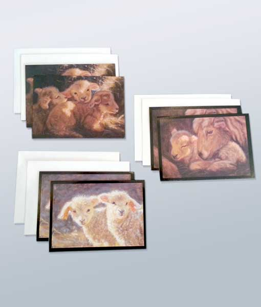 Mary Iselin greeting cards lambs